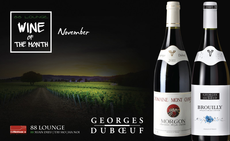 WINE OF THE MONTH OF NOVEMBER